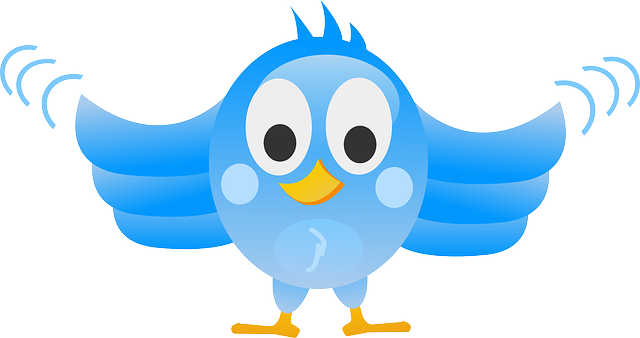 Promote your business via twitter